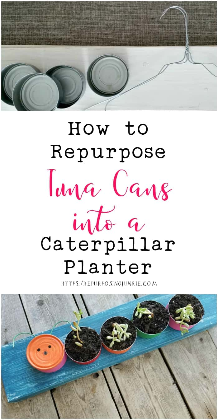 How to Repurpose Tuna Cans into a Caterpillar Planter