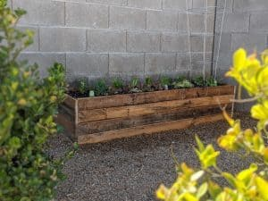 Raised pallet garden bed with vegetables