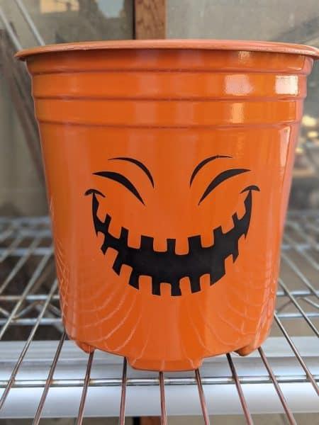 Pumpkin face plastic pot craft project Cricut vinyl